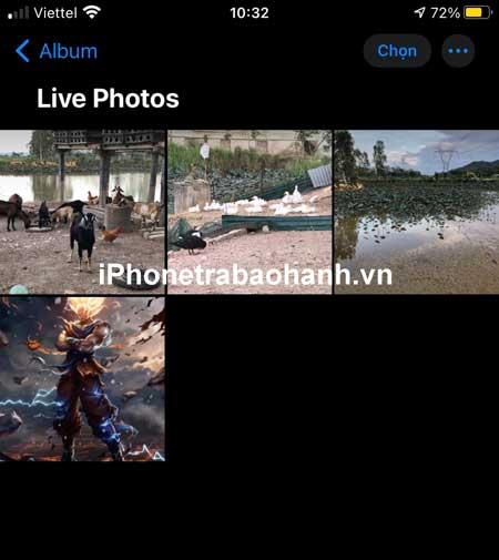 Chọn ảnh Live Photos bạn muốn chuyển