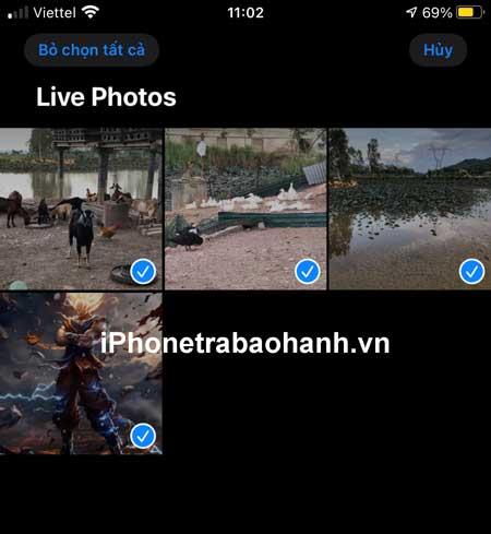 Chọn tất cả ảnh Live Photos