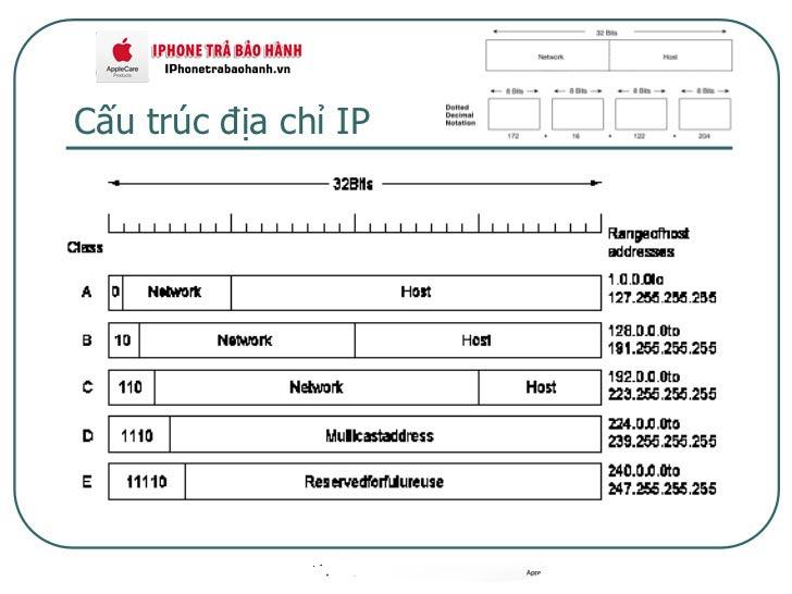 Cấu trúc của địa chỉ IP